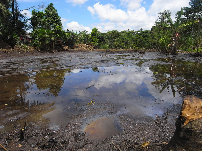 Chevron Corp. Wins Court Battle Against Ecuadorian Villagers""