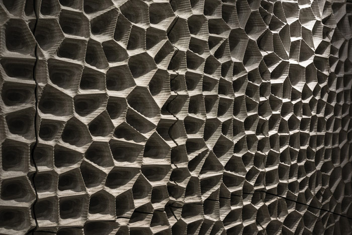 The gypsum panels that acoustically line the Grand Concert Hall form polygons. Image Credit: Johannes Arlt