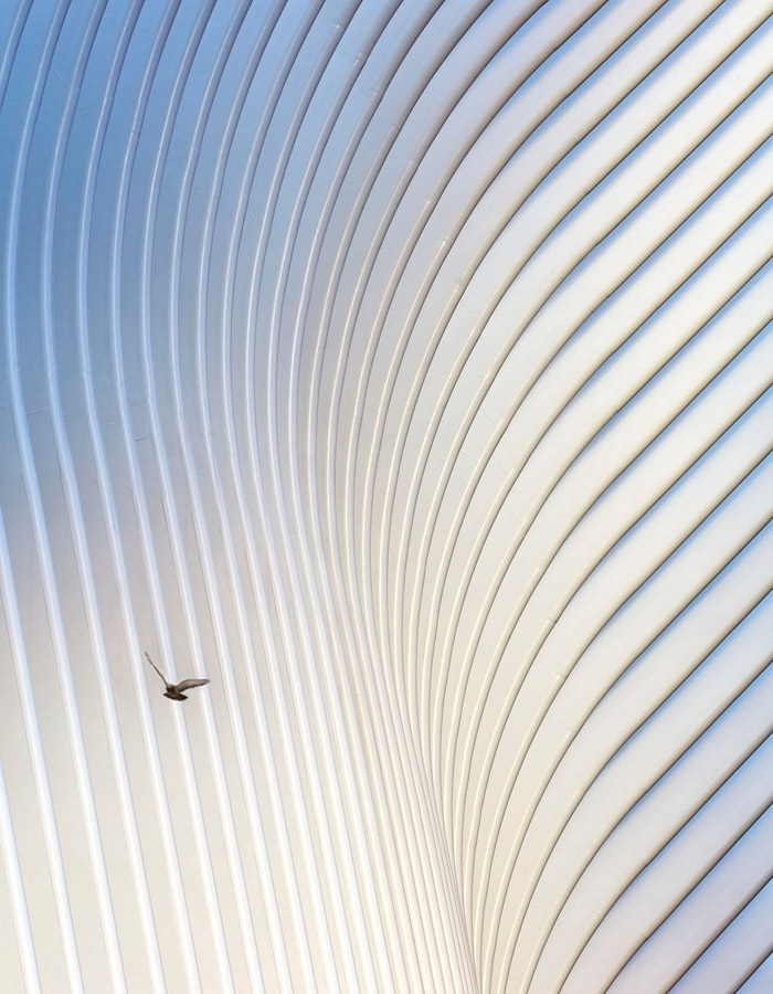 Oculus, New York, designed by Santiago Calatrava, photographed by Hufton + Crow