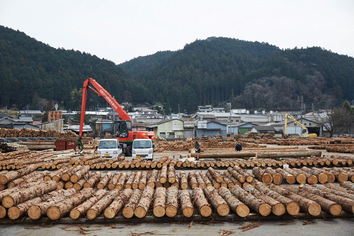 Yoshino is the centre of cedar wood production in Japan in a tradition that goes back through eight generations. Image Credit: Ryan Kim