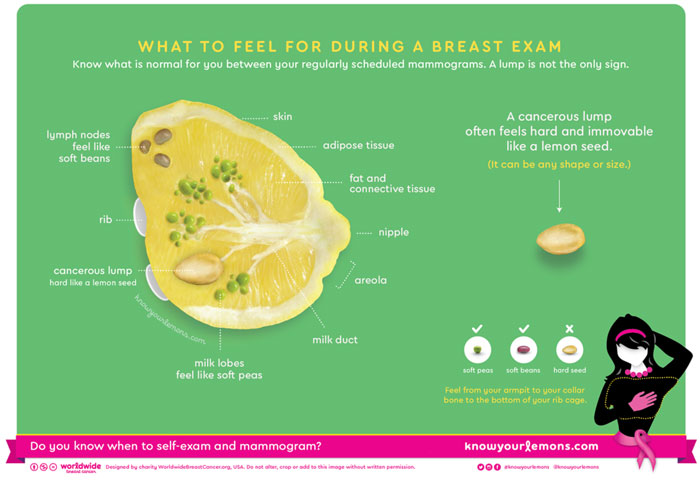 Corrine Beaumont's Know Your Lemons campaign includes a graphic for self-examination, and a visual guide to symptoms