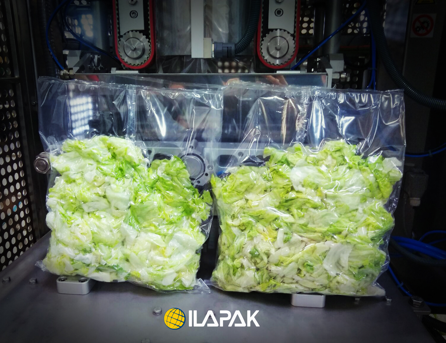 Claimed To Be The First Of Its Kind New Vacuum Packing Solution Offers Considerable Cost As Well Shelf Life Advantages For Bulk Salad Bags