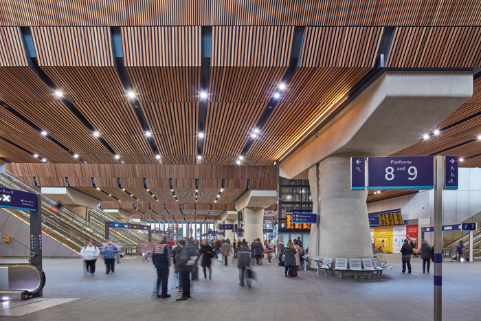 The underside of the platform bridges are lined in timber, to soften both acoustics and the material palette