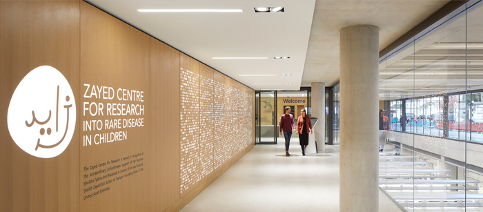 Young user groups approved the palette of grown-up and tactile materials – lots of timber, lots of textured concrete – that are used throughout the building