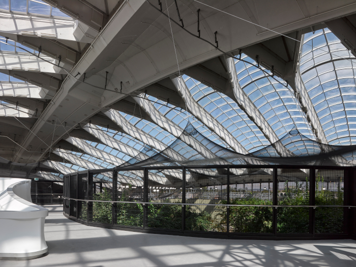 Taillibert's design was repurposed as a Biodome in 1992, with animal and plant enclosures inserted under the sprawling glass ceiling