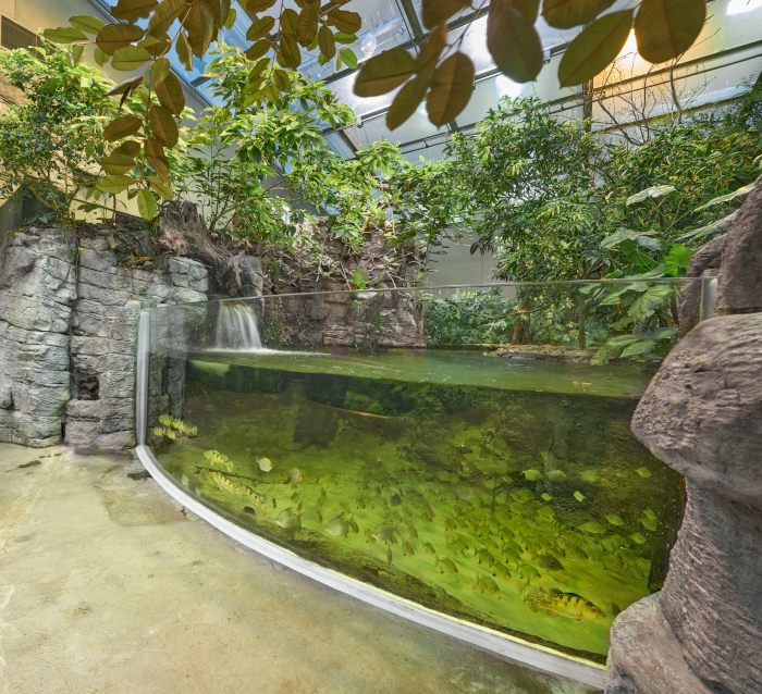 Redesigning animal enclosures required significant research into the living habits and patterns of every creature