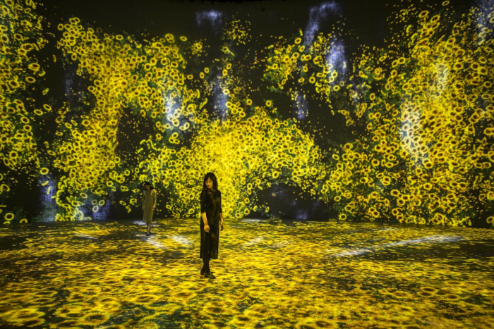 the works are some of the most immersive installations in the world