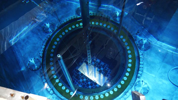 Assemblies loaded into Vogtle 2 in April 2019 have completed their first cycle (Credit: Southern Nuclear)