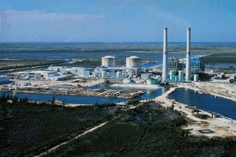 Turkey Point nuclear plant