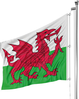 Photo of a Welsh flag on a flagpole