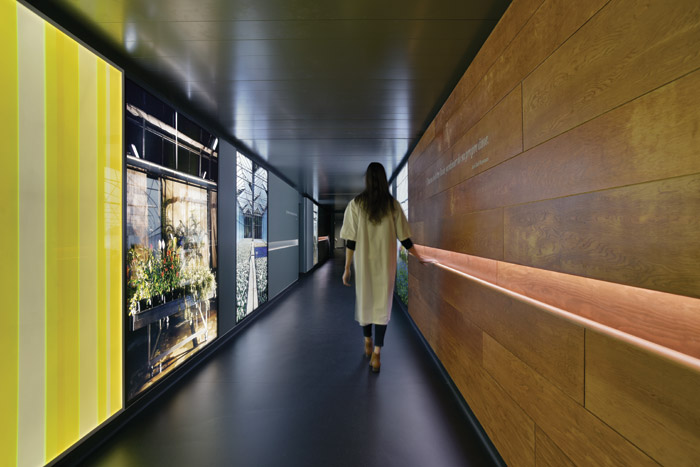 Photography by Thierry Bal. Le Jardin Hospitalier, 2015 by Jyll Bradley as part of the new Patrons Programme, Fondation De France / Curated And Produced By Artconnexion, Lille.