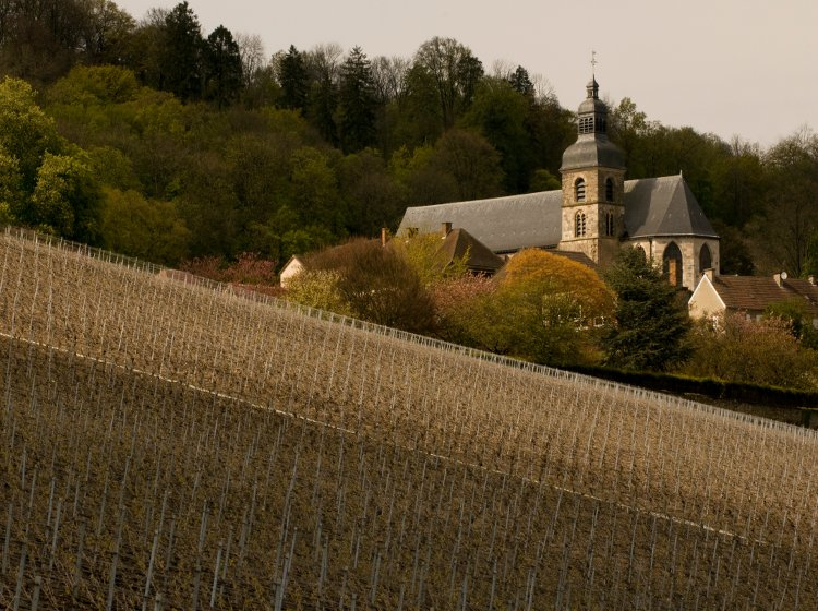The Abbey of Hautvillers and some of its steep-sloping vineyards in the premier cru village of the same name, still an important source of Pinot Noir for Dom Pérignon