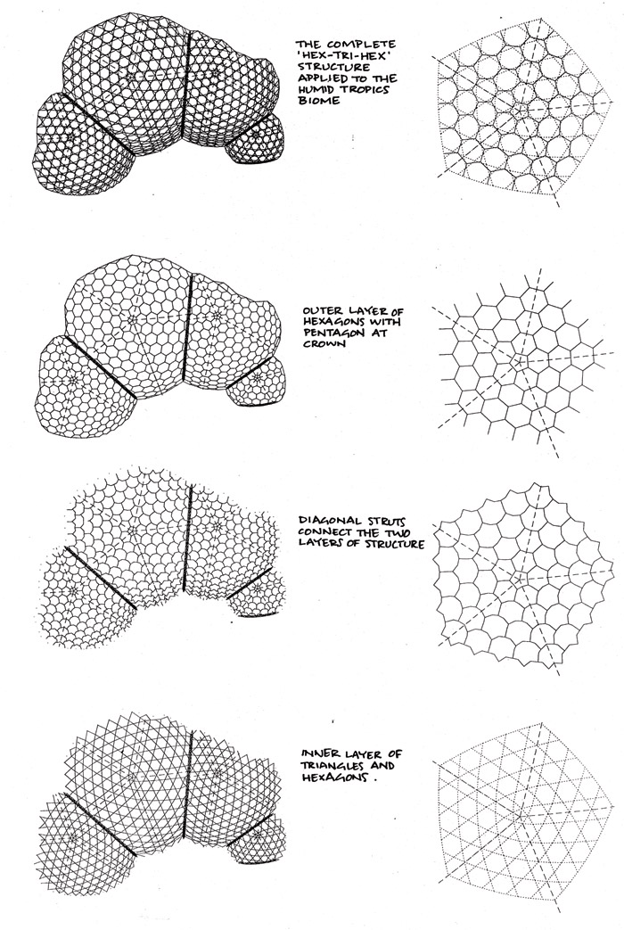 The Biomes Are Made Of A Hex Tri Two Layers Structure