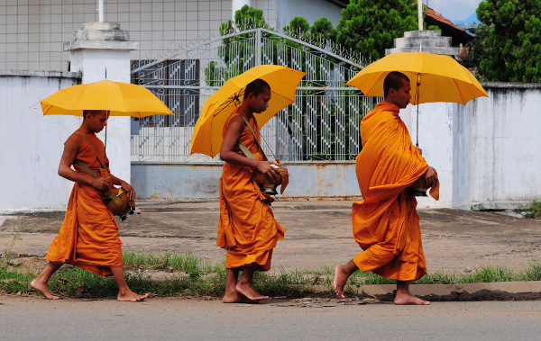 Buddhists with brollies