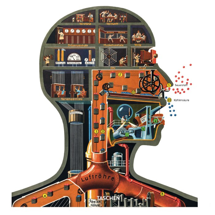 "'In the plate ""Man as Industrial Palace"", an attempt was made to depict the most important processes of life, which can never be observed directly, in the form of familiar technical processes so as to provide an overall picture of the human body's inner life' (1926) All images taken from the Fritz Kahn Monograph Published By Taschen"