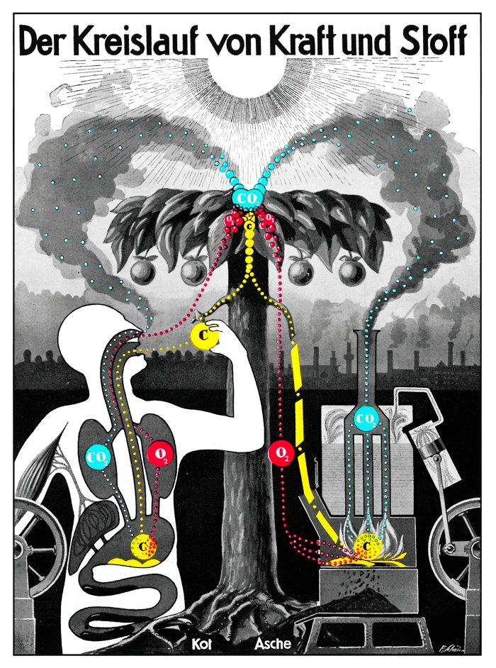 The cycle of matter and energy All images taken from the Fritz Kahn Monograph Published By Taschen