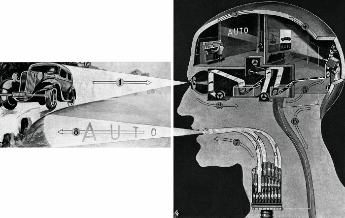 "'What goes on in our heads when we see a car and say ""car""' (1939) All images taken from the Fritz Kahn Monograph Published By Taschen"