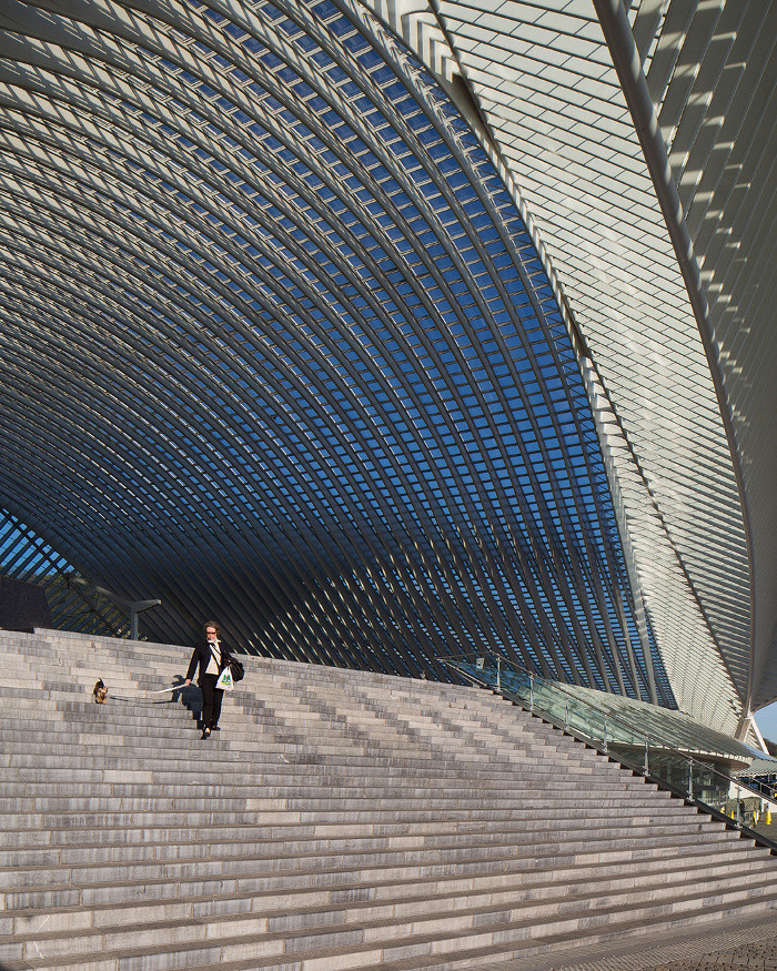 Liège-Guillemins_station_Santiago Calatrava