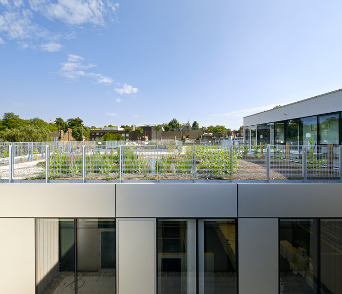 The roof gardens atop Heneghan Peng's Greenwich University building are home to bold innovations in algaeponics, plots to test planting and ecosystems. Photo Credit: Hufton + Crow