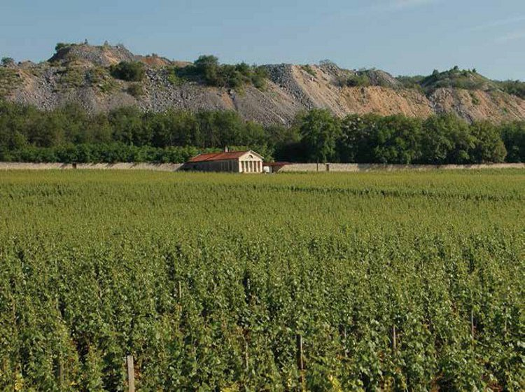 """Domaine Mugnier, whose owner Frédéric Mugnier says he is """"confident of the 2012s"""""""