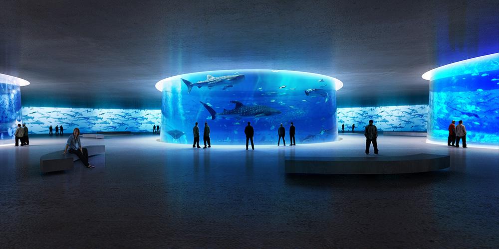 design aquarium