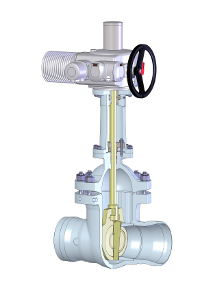 Pentair Sempell wedge gate valve