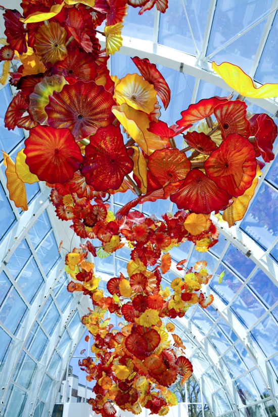 Dale Chihuly