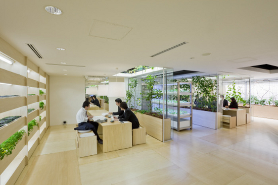 Examples of biophilic buildings man and environment for Office design examples