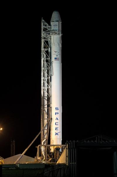 Falcon rockets