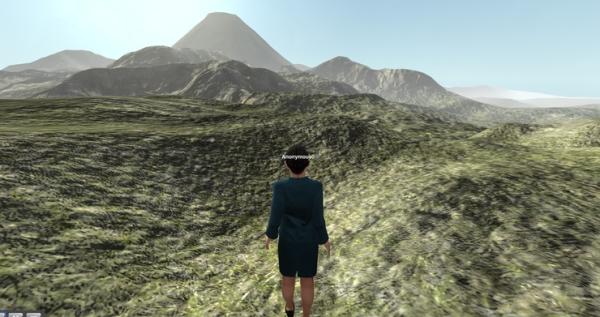 vwf landscape
