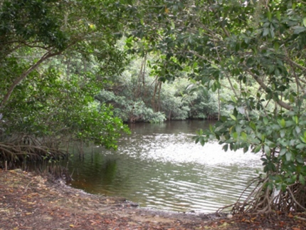 CH2M HILL secures wetlands restoration contract