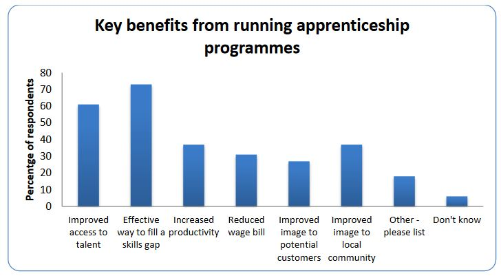 UK Skills shortage - apprentice schemes