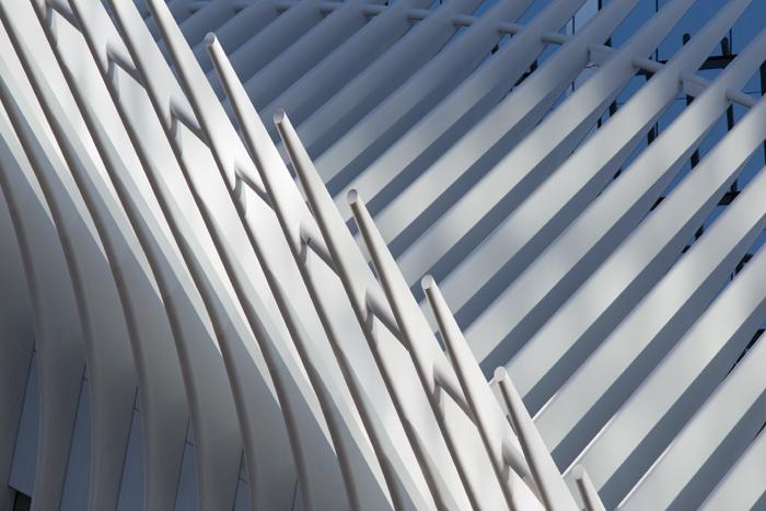 Steel ribs soar up into the sky at Santiago Calatrava's World Trade Center transit hub